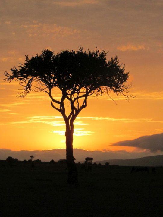 Napfelkelte Masai Marában